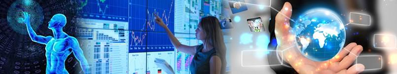Sistemas empresariais ERP, Módulos Integrados de Gestão